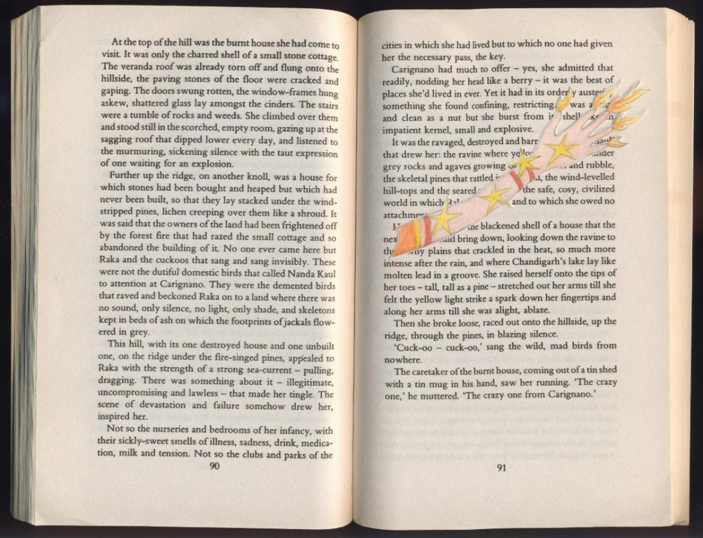 Anita Desai - Fire On The Mountain
